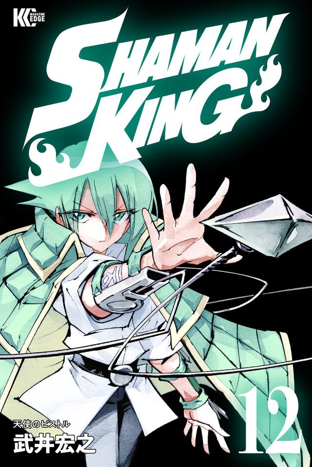 SHAMAN KING KC完結版(12)