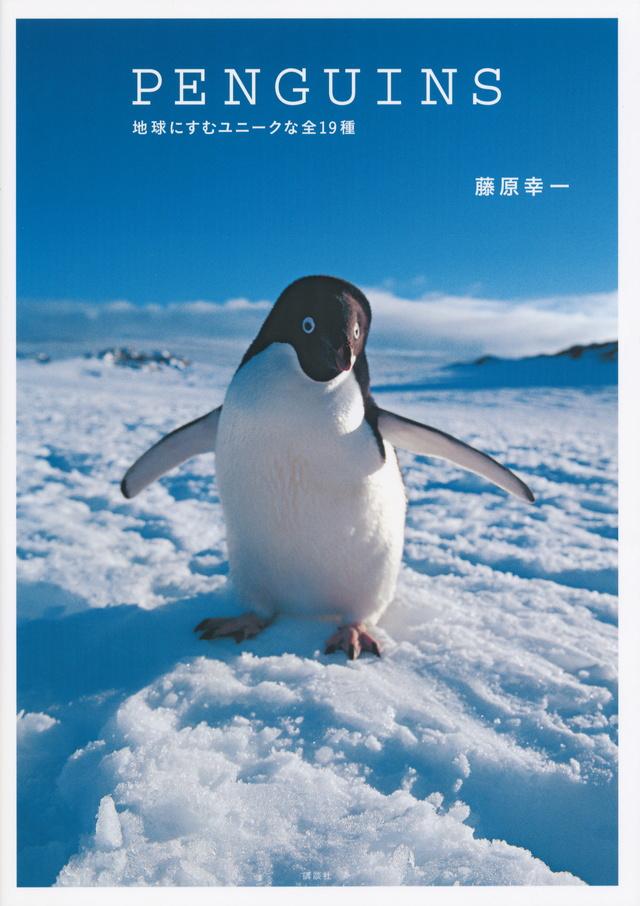 PENGUINS 地球にすむユニークな全19種