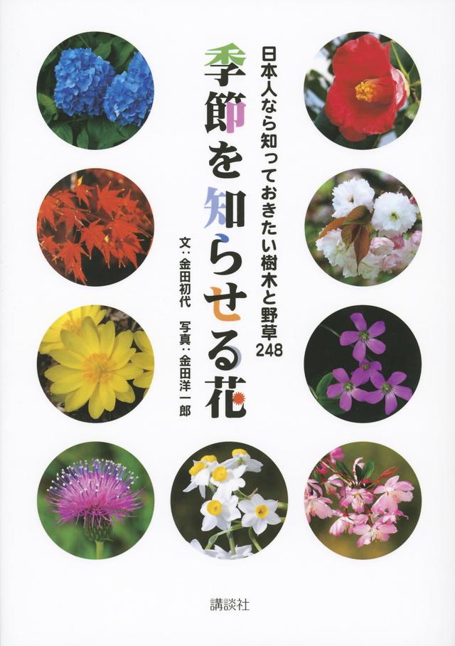 日本人なら知っておきたい樹木と野草248