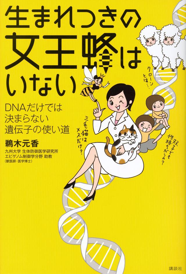 生まれつきの女王蜂はいない DNAだけでは決まらない遺伝子の使い道