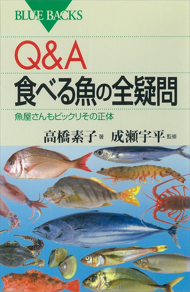Q&A 食べる魚の全疑問