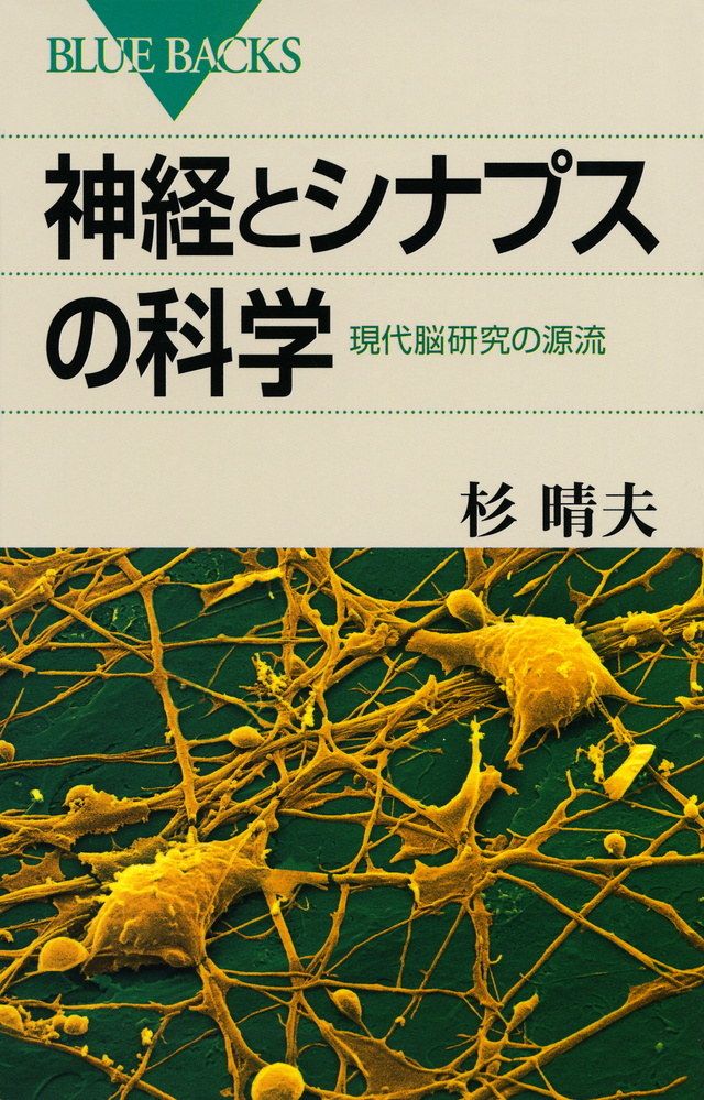 神経とシナプスの科学