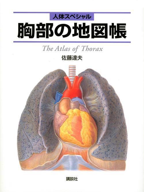 人体スペシャル 胸部の地図帳