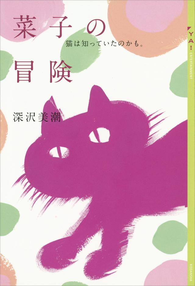 菜子の冒険 猫は知っていたのかも。