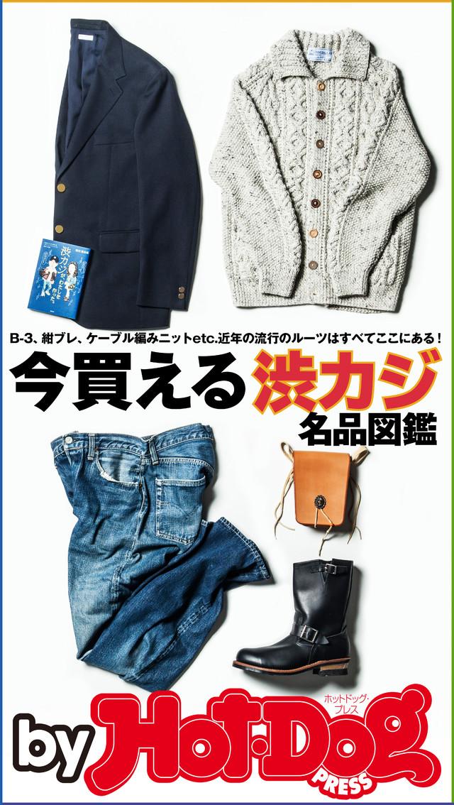 by Hot-Dog PRESS 今買える渋カジ名品図鑑